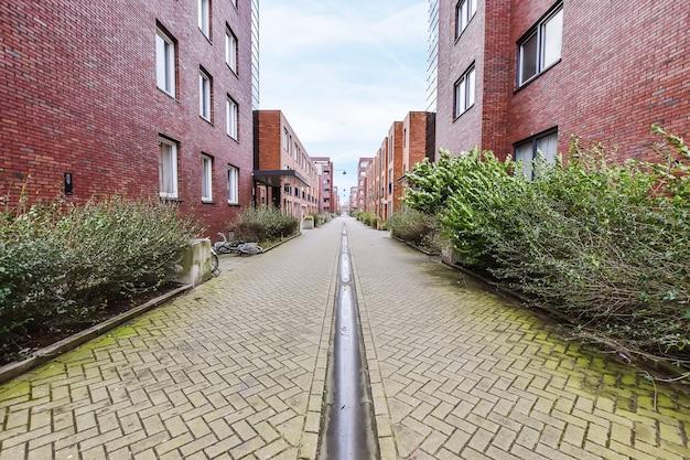 曇りの日に都市の住宅街の緑の茂みやアパートの近くに行くまっすぐな舗装された道