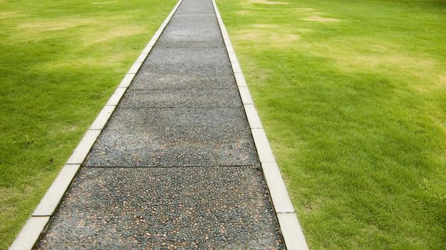 신선한 매우 상세한 녹색 잔디 잔디밭에 직선 도로