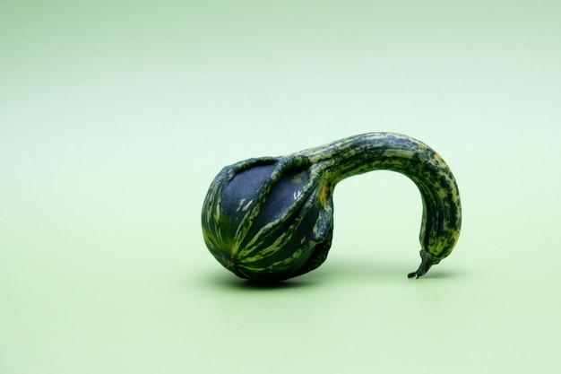 緑の背景に奇妙な装飾的なカボチャ醜い野菜は食用です有機食品廃棄物を減らす
