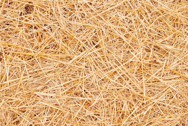 Straw background.