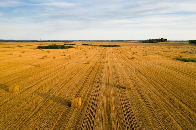 Соломенные тюки на сельскохозяйственных угодьях с голубым пасмурным небом. убранное поле с тюками в европе. урожай. беларусь.