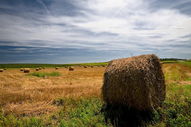 Тюков соломы на сельскохозяйственных угодьях с голубым облачным небом