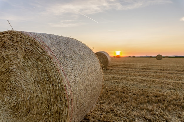 Straw bales stacked in a field at reims, france