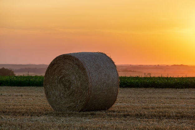 Straw bales stacked in a field at sunset time