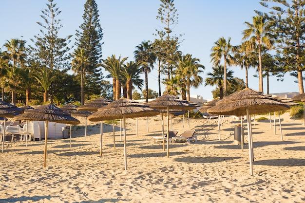 Соломенные зонтики на пустом приморском пляже в греции