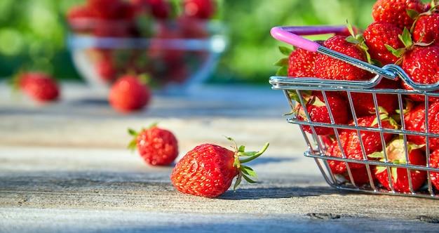 딸기는 몸에 유익하고 해롭다