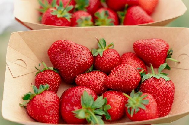 딸기는 일회용 에코 플레이트에 닫힙니다.