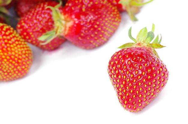 흰색 절연 딸기