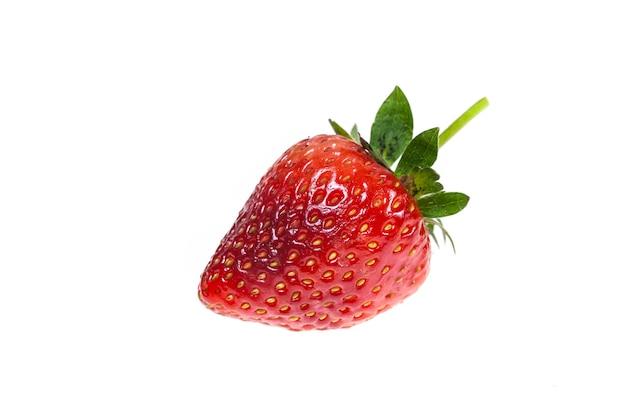 白い背景の上のイチゴ。