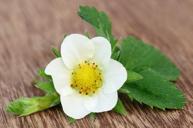 Цветок клубники с листьями на деревянной поверхности