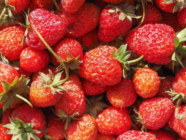 イチゴの果実の背景