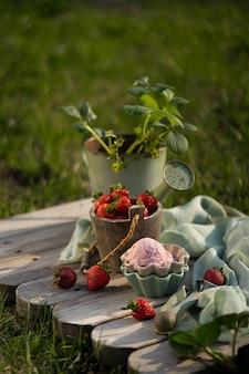 Strawberry ice cream balls with fresh strawberries in beautiful ice cream bowls. vintage garden tool