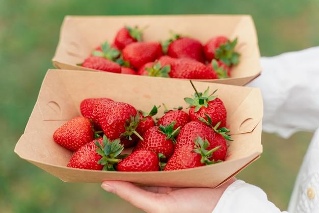 녹색 배경에 여자 손에 일회용 에코 접시에 딸기.
