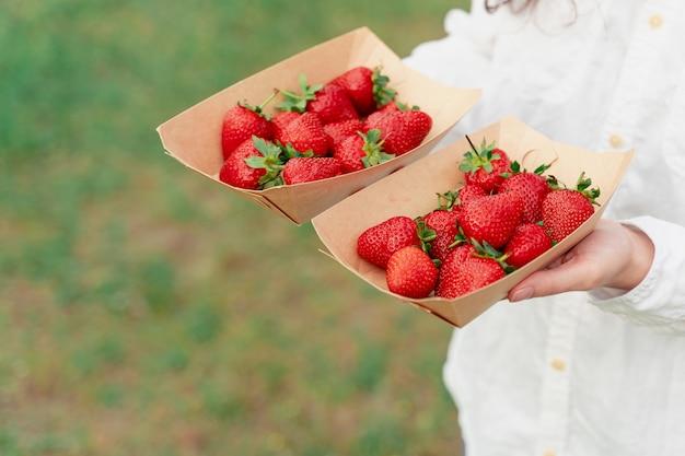여자에 일회용 에코 접시에 딸기 녹색 벽에 손