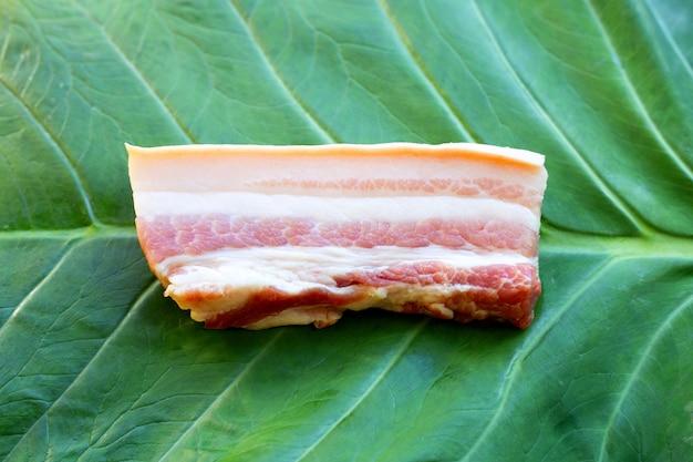 타로 잎 배경에 줄무늬 돼지고기입니다.