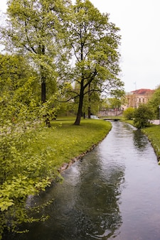 Stream flowing through park