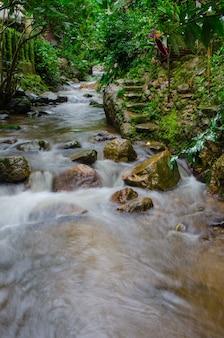 Stream at mae kampong, chiang mai, thailand