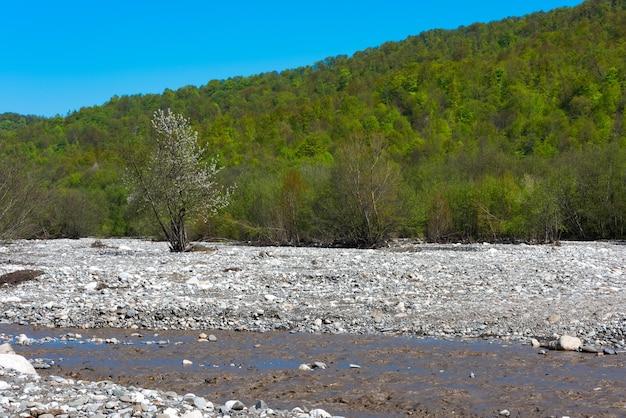 Ручей быстрой горной реки