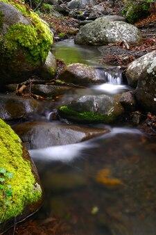 Ручей с водопадом и замшелыми камнями вокруг