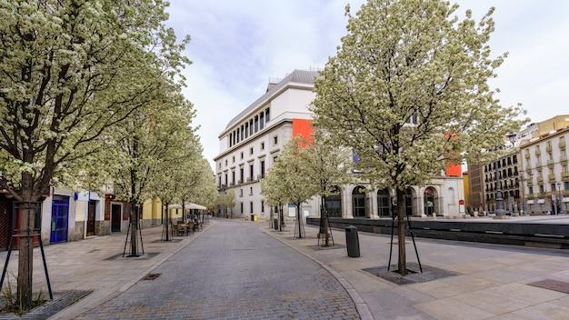 マドリードの王立劇場の建物と春の木々のある通り。スペイン。