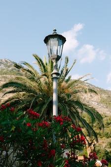 서양 협죽도의 색상으로 산을 배경으로 높은 금속 기둥에 가로등.