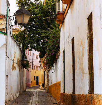 Street in old city. jerez de la frontera