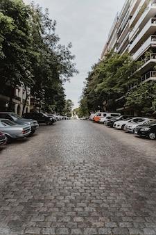 Vista sulla strada della città con auto e alberi
