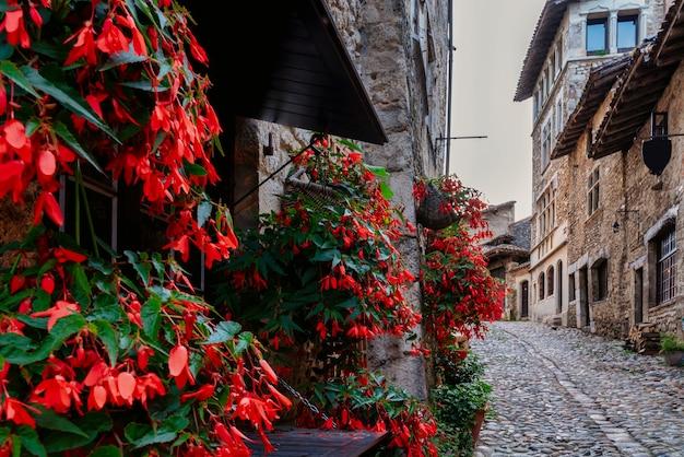 フランス、リヨンの中世の村ペルージュの壁にツタと赤い花が咲く通り