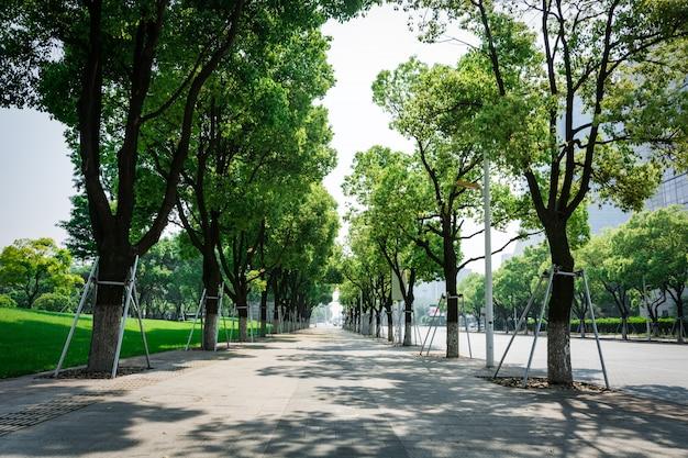 Улица с деревьями