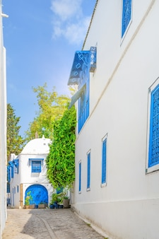 Street with white houses and blue windows and wrought iron doors in sidi bou said