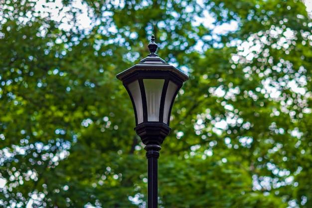 緑の木々に対する都市公園の街灯レトロなスタイルのモダンなエネルギー効率の高いランプ