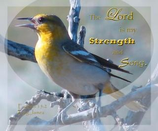 Strength and song