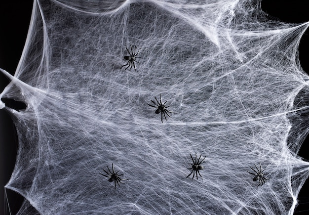 Stretched white web and black plastic spiders