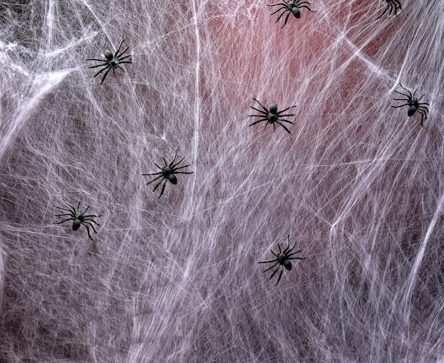 Stretched white web with red backlight and black spiders