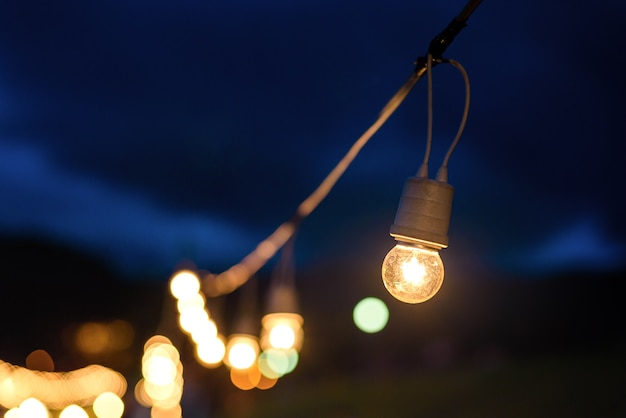 String wired light bulbs hanging from a tree in twilight evening with cloudy background