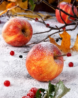 Striped apples sprinkled with powdered sugar. the dish simulates apples in the snow