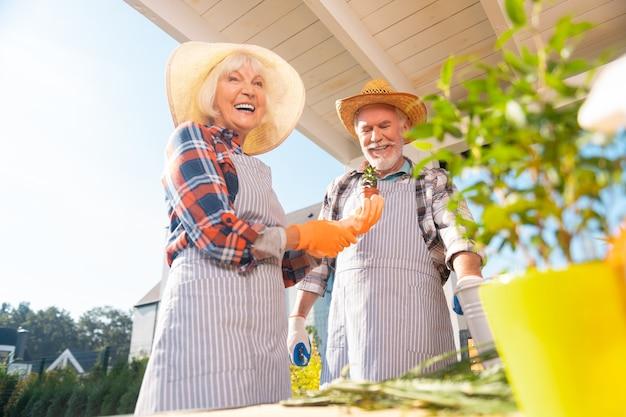 Фартуки в полоску. сияющие счастливые пенсионеры муж и жена в полосатых фартуках во время работы в саду