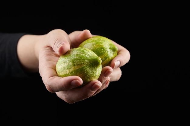 黒の女性の手の縞模様のレモン