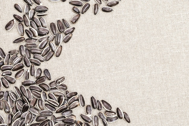 Striped sunflower seeds close up on cloth with copy space.