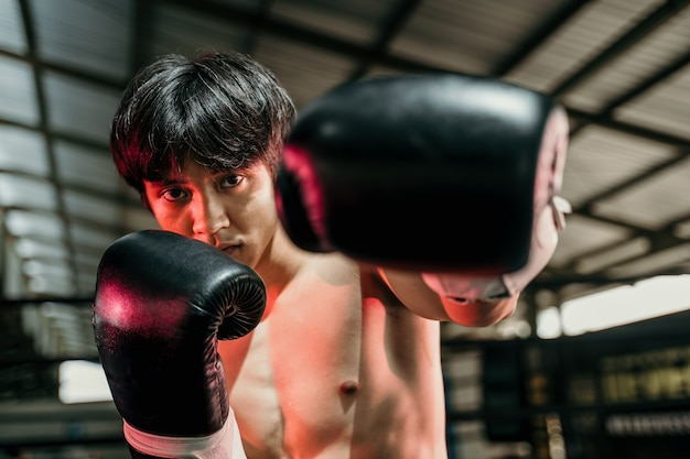 Strong young man stand wearing boxing gloves with fists in the arena