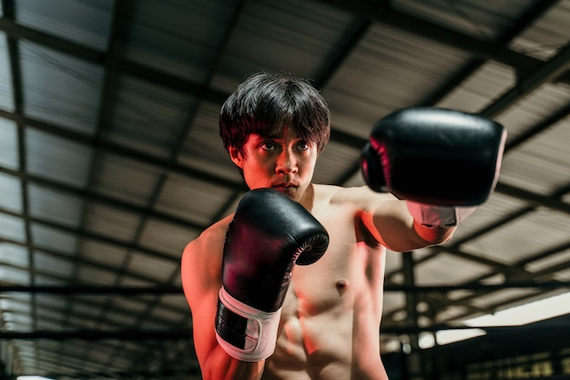 Strong young man stand wearing boxing gloves with punch in the boxing ring