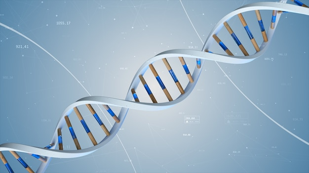 The structure of the human dna rotates against the background of compounds and numbers. conceptual science technology 3d illustration