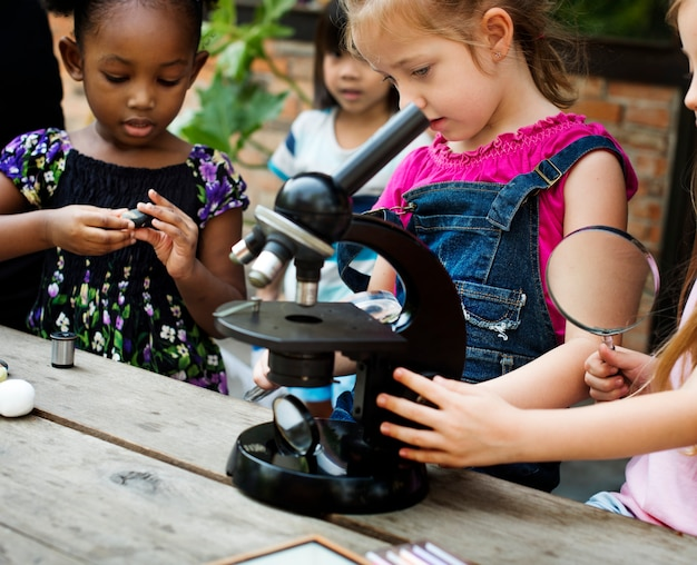 Students are using microscope for education
