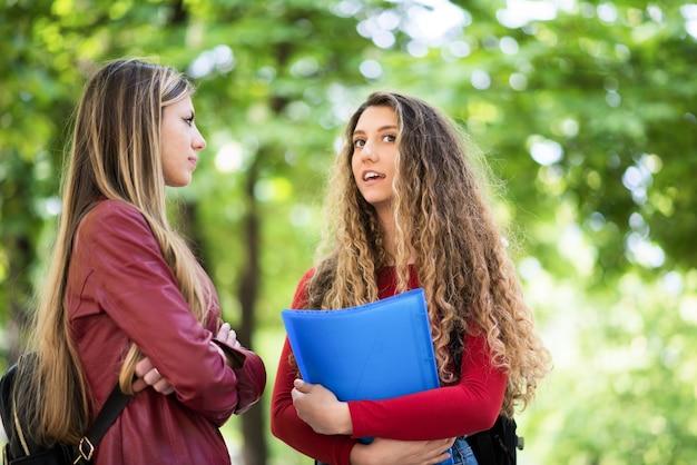 Студенты беседуют на открытом воздухе