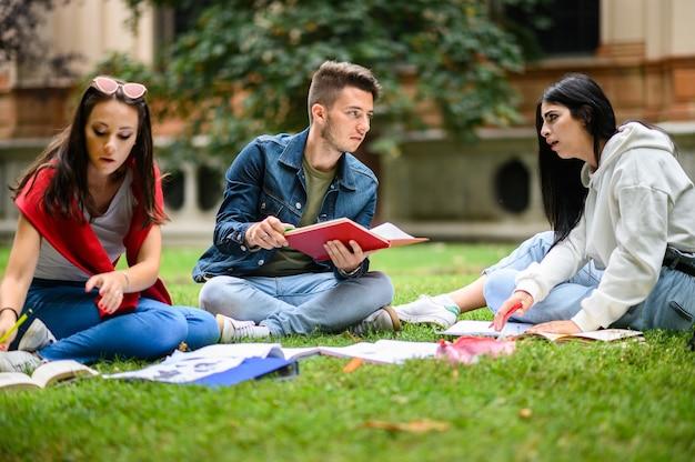 草の上に座って公園で一緒に勉強している学生