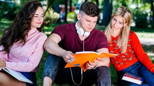 Студенты, обучающиеся вместе в парке