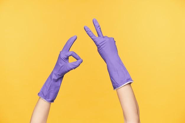 黄色の背景の上に隔離され、春の大掃除で休憩しながら平和と勝利のジェスチャーを示す紫色のゴム手袋で上げられた手のスタジオ写真
