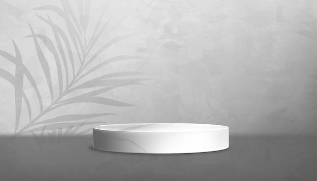회색 콘크리트 바닥에 흰색 연단이 있고 회색 시멘트 벽 텍스쳐 bac에 야자수가 있는 스튜디오 룸