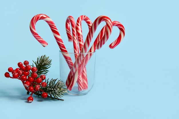 Studio shot of beautiful minimalistic simple composition with christmas lollipops in transparent glass and snowy branch of pine with red berries, holly, on blue background with copy space for ad