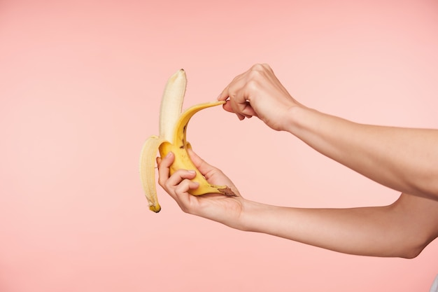 Studio shot of elegant woman's hands holding banana while peeling it and going to bite, having healthy breakfast while being isolated over pink background